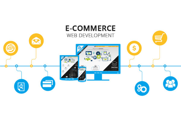 Professional Web Development Services