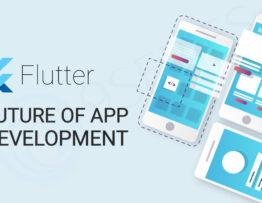 Flutter App Development Services - Hire Expert Flutter Developers