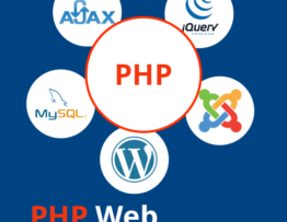 Why You Should You Learn PHP Web Development in 2020?